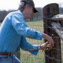 A Farmer's Fence is Vital to His or Her Livelihood