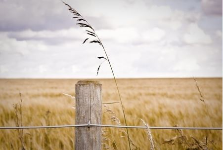 A Lasting Fix: Fixed Knot Fences a Great Farm Option - All Around Fence