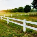 Why Farmers Should Have a Reliable Fence in Place