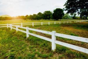 Farm Fences