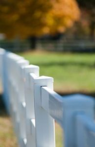 Vinyl Fencing for Animal Owners