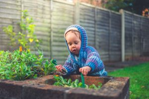 Fences for Families With Small Children